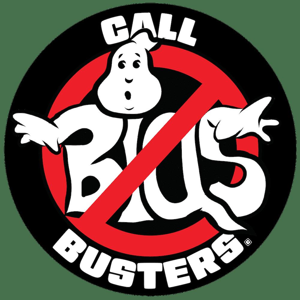 Call Bias Busters Logp